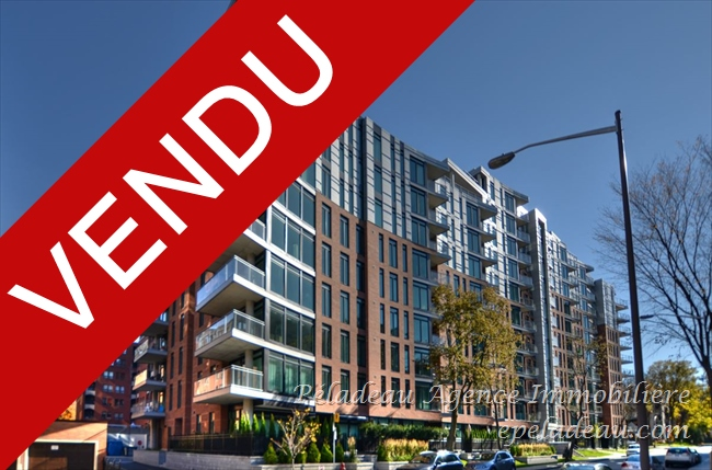 1175 Av. Turnbull #224